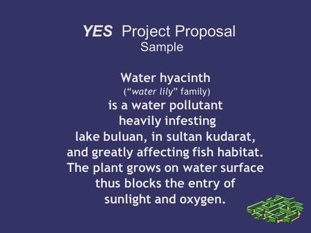 "YES Project Proposal Sample Water hyacinth (""water lily"" family) ‏ is a water pollutant heavily infesting lake buluan, in sultan kudarat, and greatly affecting."