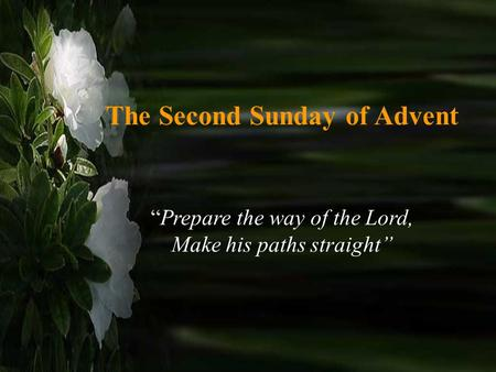 "The Second Sunday of Advent ""Prepare the way of the Lord, Make his paths straight"""