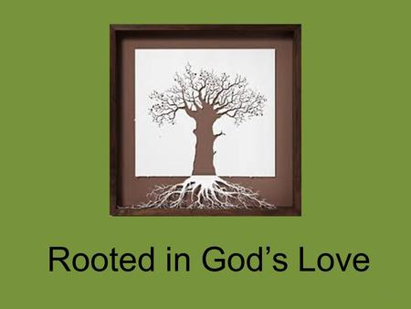 Rooted in God's Love 1. God's Love: The Root of it All What kind of a love is it? The Psalmists tell us – It is UNFAILING (16 psalms) Constant, unflagging.