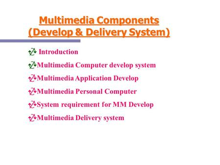 Multimedia Components (Develop & Delivery System)