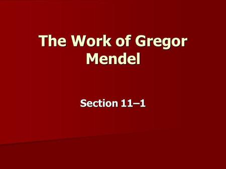The Work of Gregor Mendel Section 11–1. GENETICS The scientific study of heredity is called. The scientific study of heredity is called. Genetics Genetics.