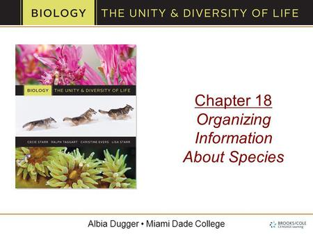 Albia Dugger Miami Dade College Chapter 18 Organizing Information About Species.