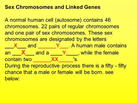 Sex Chromosomes and Linked Genes A normal human cell (autosome) contains 46 chromosomes. 22 pairs of regular chromosomes and one pair of sex chromosomes.