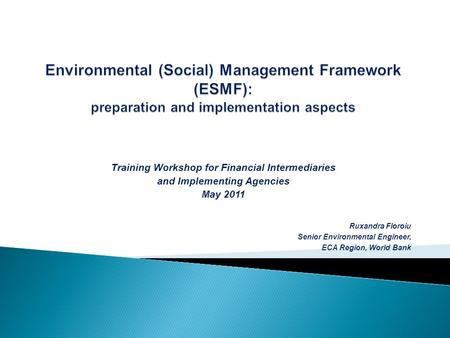 Training Workshop for Financial Intermediaries and Implementing Agencies May 2011 Ruxandra Floroiu Senior Environmental Engineer, ECA Region, World Bank.