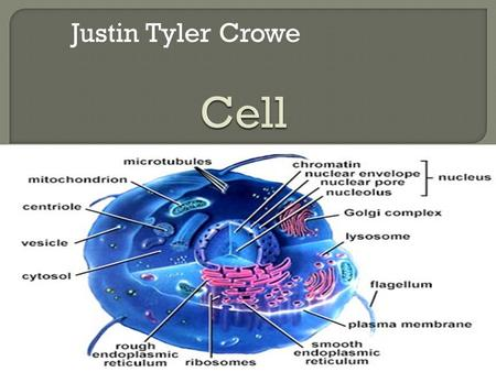 Justin Tyler Crowe.  A cell is like a truck Nucleus is like a vehicle computer Because the computer controls everything.