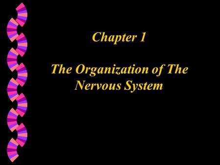 Chapter 1 The Organization of The Nervous System.
