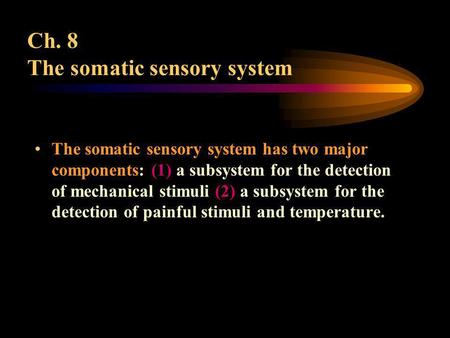 Ch. 8 The somatic sensory system The somatic sensory system has two major components: (1) a subsystem for the detection of mechanical stimuli (2) a subsystem.