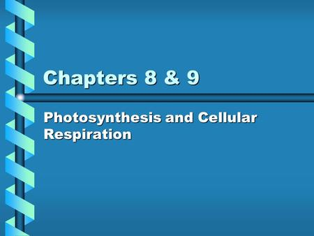 Chapters 8 & 9 Photosynthesis and Cellular Respiration.