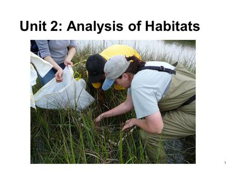 Unit 2: Analysis of Habitats 1. 2 Ecological concepts Habitat Environment Population Ecosystem Community.