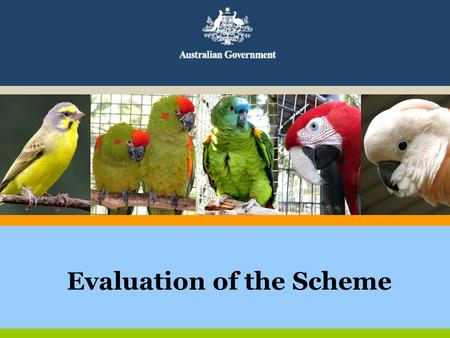 Evaluation of the Scheme. Aims of Evaluation levels of awareness of the scheme in the exotic bird keeping sector levels of understanding of the scheme.