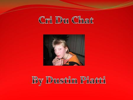 Cri Du Chat By Dustin Piatti.