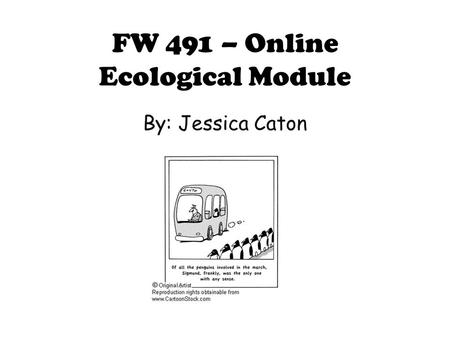 FW 491 – Online Ecological Module By: Jessica Caton.