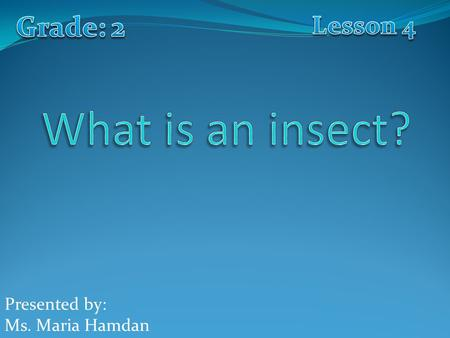 Presented by: Ms. Maria Hamdan. What are these small creatures that we have in this picture? These are insects.