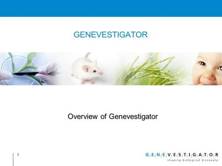 1 GENEVESTIGATOR Overview of Genevestigator. Content Introduction Tools Metaprofile analysis Biomarker search RefGenes Clustering analysis Additional.