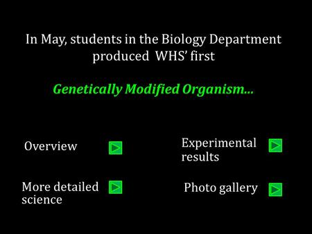 In May, students in the Biology Department produced WHS' first Genetically Modified Organism... More detailed science Experimental results Overview Photo.