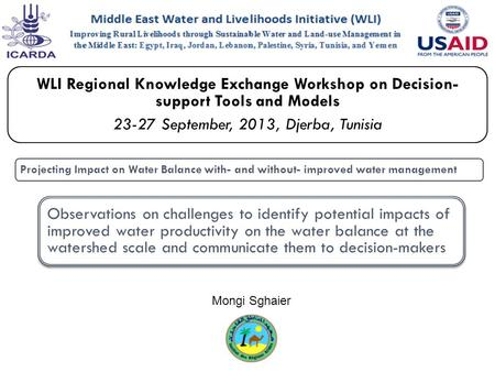 WLI Regional Knowledge Exchange Workshop on Decision- support Tools and Models 23-27 September, 2013, Djerba, Tunisia Projecting Impact on Water Balance.