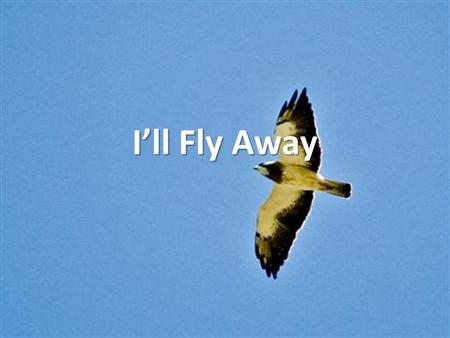 I'll Fly Away. Some glad morning When this life is o'er, I'll (Fly Away) Fly Away (Fly Away).