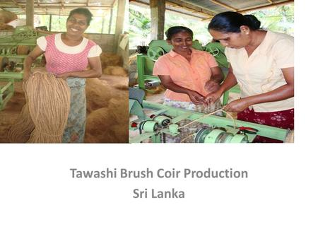 Tawashi Br Tawashi Brush Coir Production Sri Lanka.
