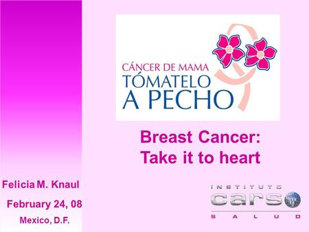 Breast Cancer: Take it to heart February 24, 08 Mexico, D.F. Felicia M. Knaul.