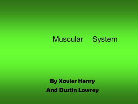 Muscular System By Xavier Henry And Dustin Lowrey.