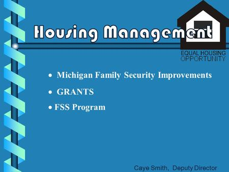  Michigan Family Security Improvements  GRANTS Caye Smith, Deputy Director  FSS Program.