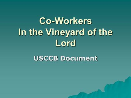 Co-Workers In the Vineyard of the Lord USCCB Document.