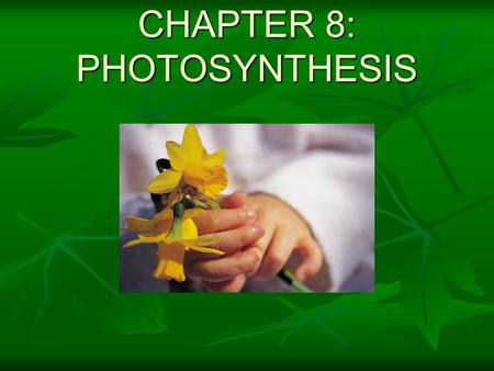 CHAPTER 8: PHOTOSYNTHESIS. 8-1 Energy of Life  Energy=  Living organisms depend on energy.  Living things get energy from _______.  The ultimate source.