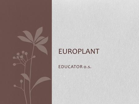 EDUCATOR o.s. EUROPLANT. Mission of Educator The main mission of the organisation is to support and activate children, young people, adults, seniors and.