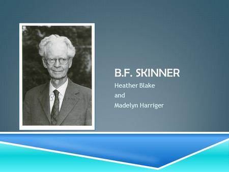 B.F. SKINNER Heather Blake and Madelyn Harriger. ABOUT B.F. SKINNER  Burrhus Frederic Skinner  Born March 20, 1904 in Susquehanna, Pennsylvania  Hamilton.