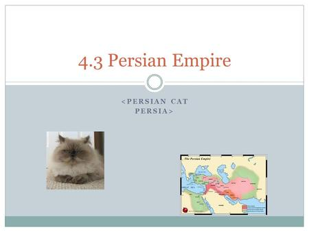 <PERSIAN CAT PERSIA> 4.3 Persian Empire. Main Idea By governing with tolerance and wisdom, the Persians est'd a well-ordered empire that lasted for 200.