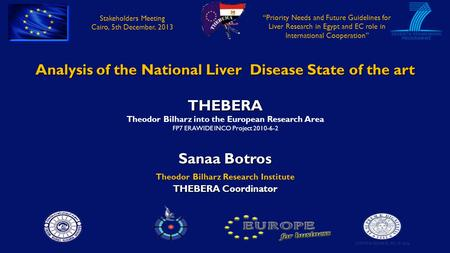 Analysis of the National Liver Disease State of the art THEBERA Theodor Bilharz into the European Research Area FP7 ERAWIDE INCO Project 2010-6-2 Sanaa.