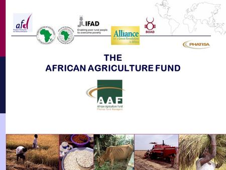 THE AFRICAN AGRICULTURE FUND. AFRICAN AGRICULTURE FUND The opportunity of an investment fund Investment strategy and targets Fund governance Fund structure.