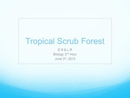 Tropical Scrub Forest E S & L R Biology 2 nd Hour June 3 rd, 2013.