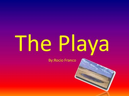 The Playa By:Rocio Franco. Geographical Location Found in the Southern High Plains in the United States. Usually in round depressions or flat landscapes.