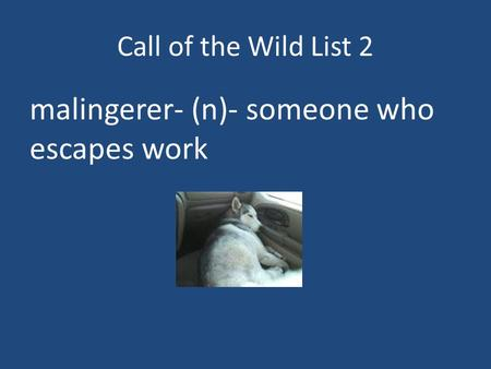 Call of the Wild List 2 malingerer- (n)- someone who escapes work.