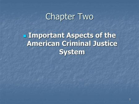 1 Chapter Two Important Aspects of the American Criminal Justice System Important Aspects of the American Criminal Justice System.