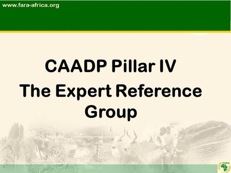 CAADP Pillar IV The Expert Reference Group 1www.fara-africa.org.