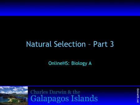 Natural Selection – Part 3