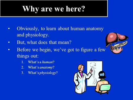 Why are we here? Obviously, to learn about human anatomy and physiology. But, what does that mean? Before we begin, we've got to figure a few things out: