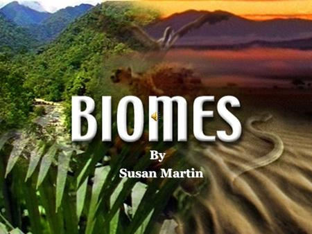 By Susan Martin Biology Standard Standard 5.0 - The student will investigate the diversity of organisms by analyzing taxonomic systems, exploring diverse.