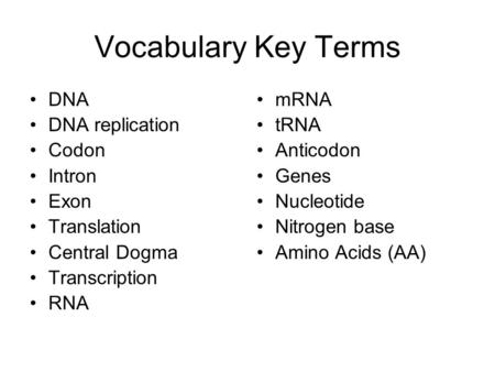 Vocabulary Key Terms DNA DNA replication Codon Intron Exon Translation Central Dogma Transcription RNA mRNA tRNA Anticodon Genes Nucleotide Nitrogen base.