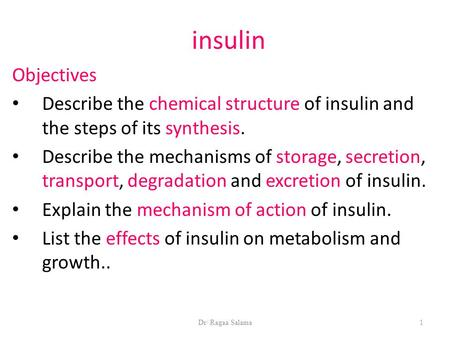 Dr/ Ragaa Salama1 insulin Objectives Describe the chemical structure of insulin and the steps of its synthesis. Describe the mechanisms of storage, secretion,