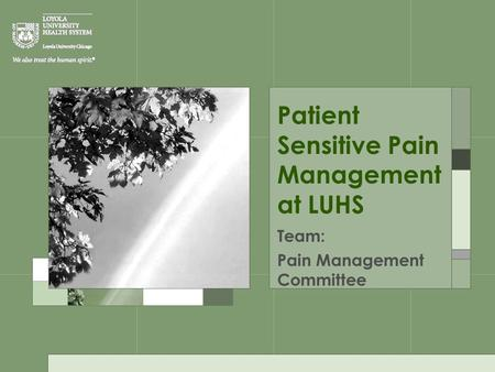 Patient Sensitive Pain Management at LUHS