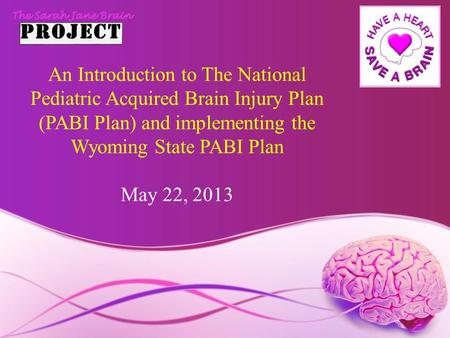 An Introduction to The National Pediatric Acquired Brain Injury Plan (PABI Plan) and implementing the Wyoming State PABI Plan May 22, 2013.