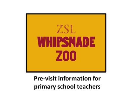 Pre-visit information for primary school teachers.