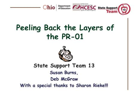 Peeling Back the Layers of the PR-01 State Support Team 13 Susan Burns, Deb McGraw With a special thanks to Sharon Rieke!!!
