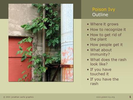 © 2003 jonathan sachs graphics www.poison-ivy.org 1 Poison Ivy Outline Where it grows How to recognize it How to get rid of the plant How people get it.