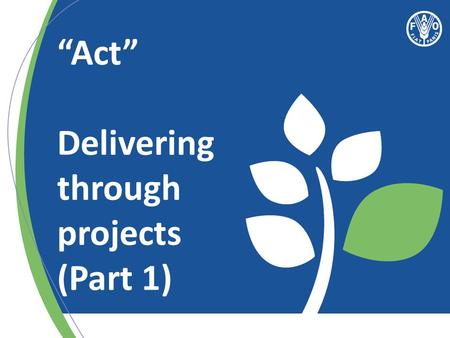 """Act"" Delivering through projects (Part 1). Effective Country Programme = Effective Projects."