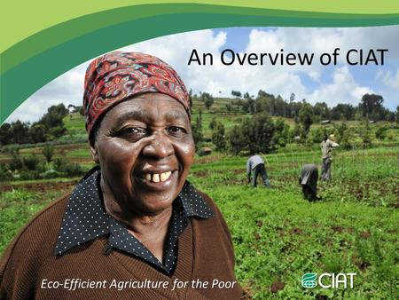 Eco-Efficient Agriculture for the Poor An Overview of CIAT.