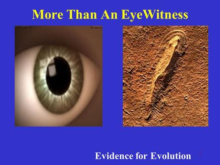 1 More Than An EyeWitness Evidence for Evolution.